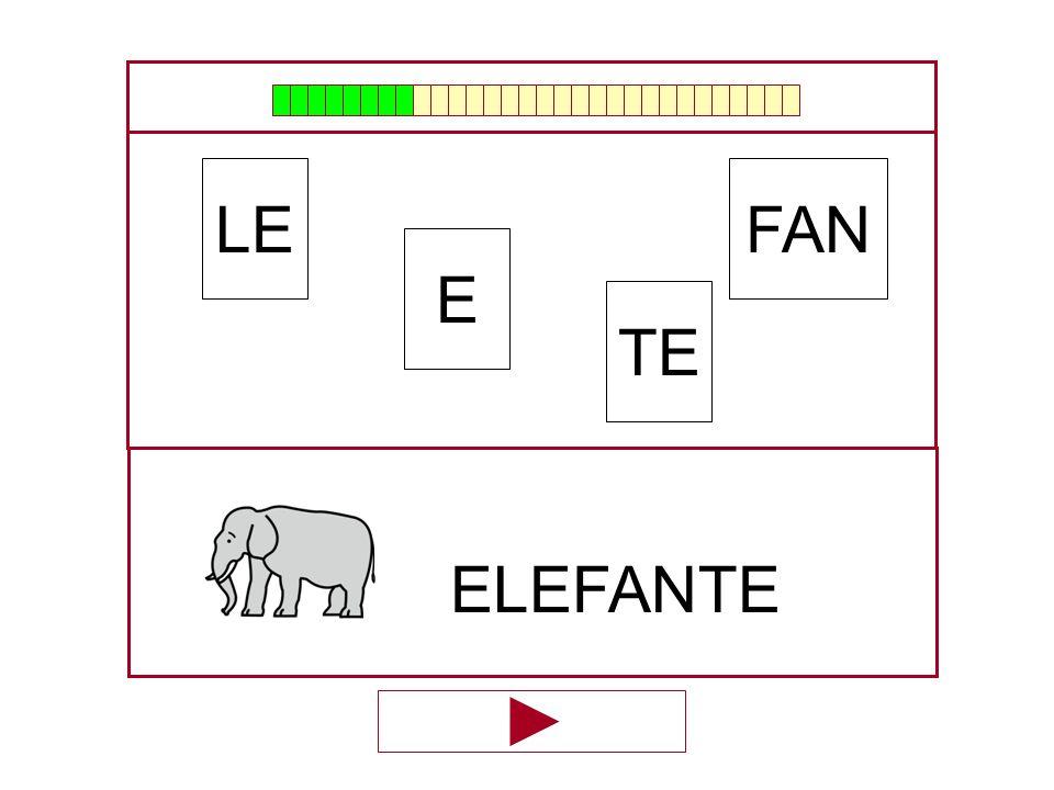 LE FAN E TE ELEFANTE …