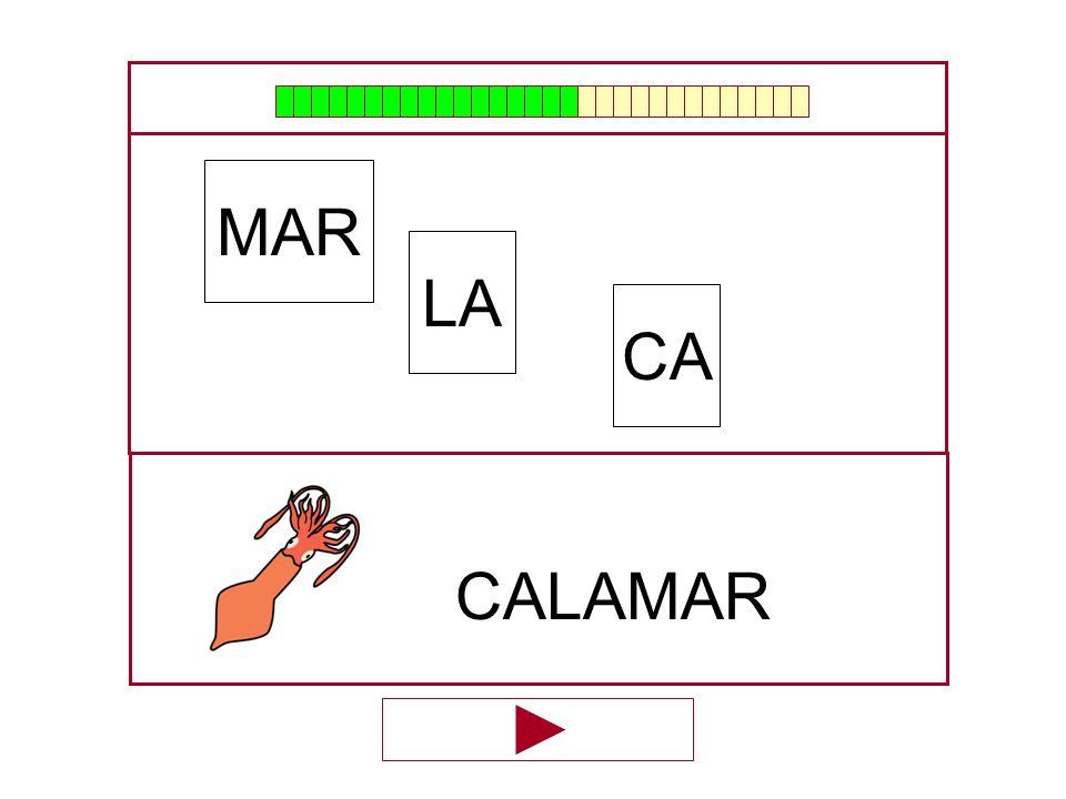 MAR LA CA CALAMAR …