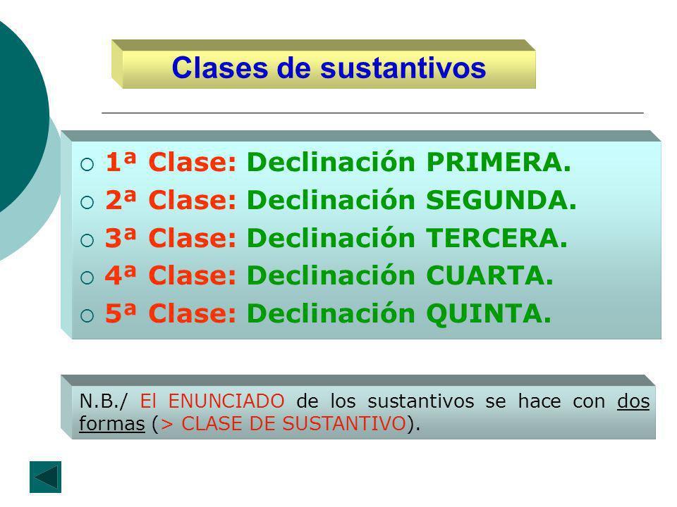 Clases de sustantivos 1ª Clase: Declinación PRIMERA.