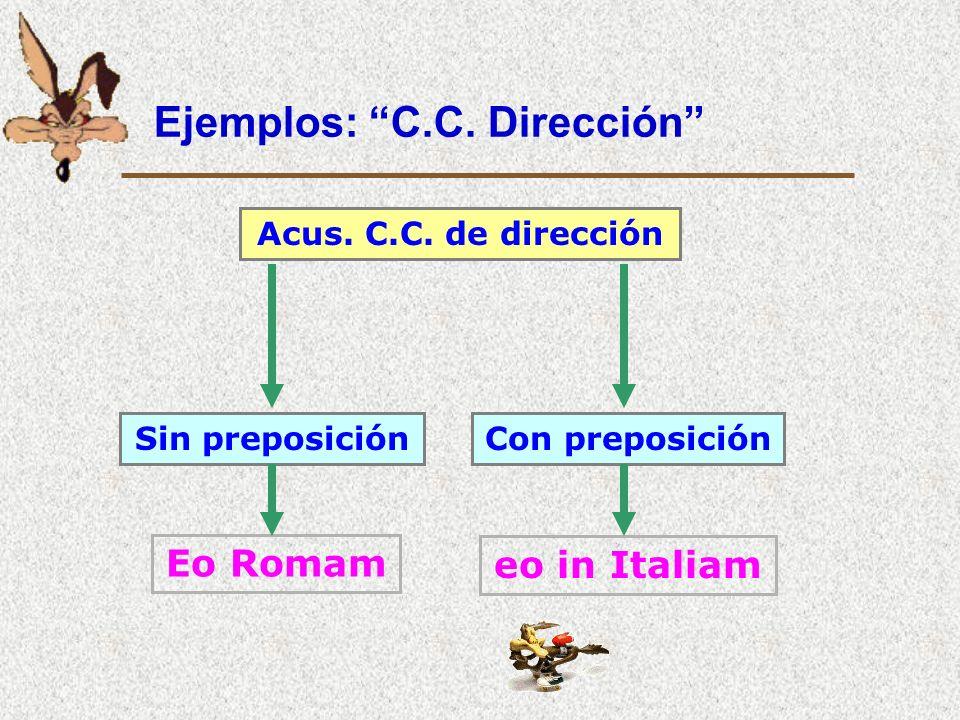 Ejemplos: C.C. Dirección