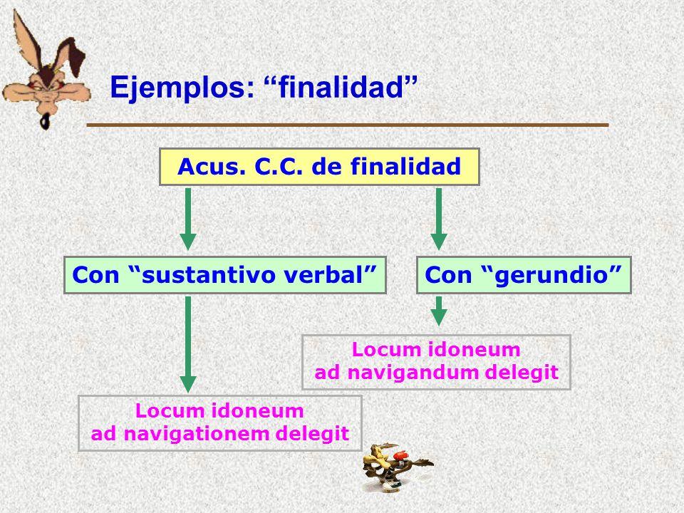 Ejemplos: finalidad