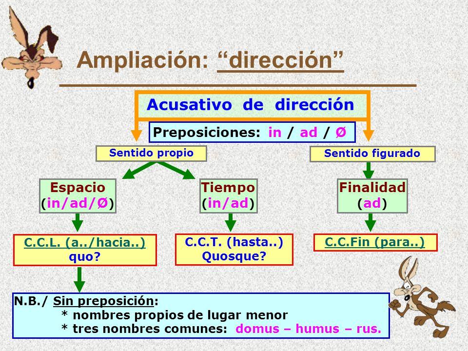 Ampliación: dirección
