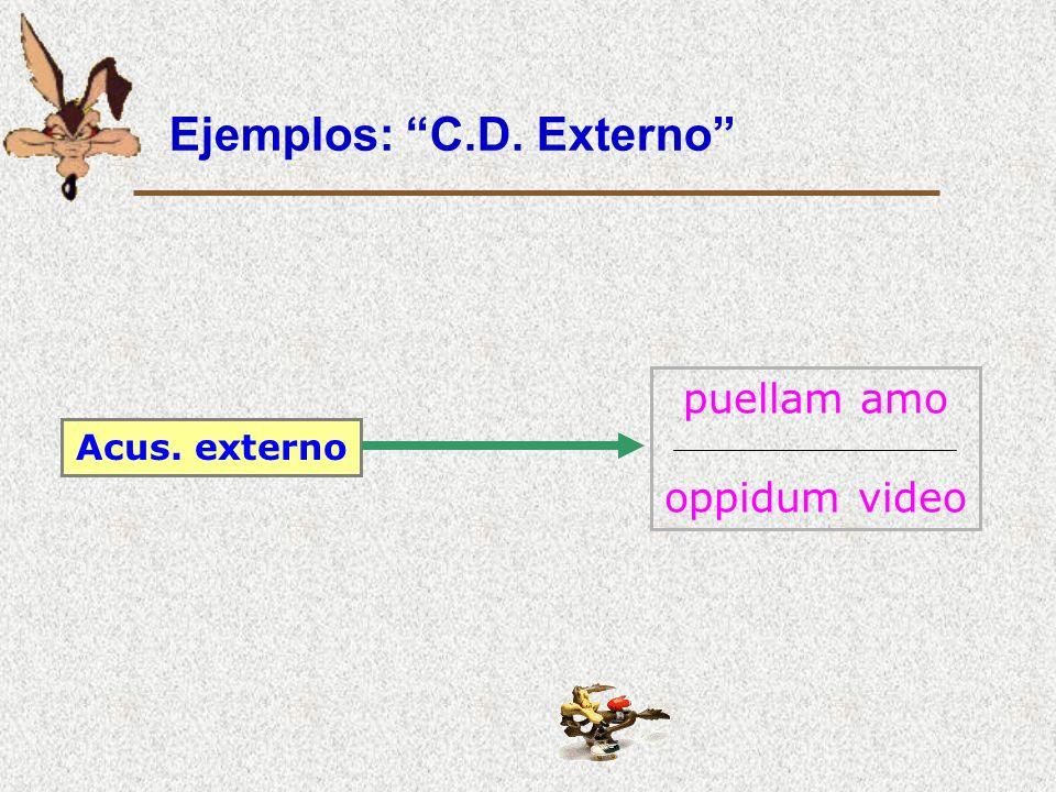 Ejemplos: C.D. Externo