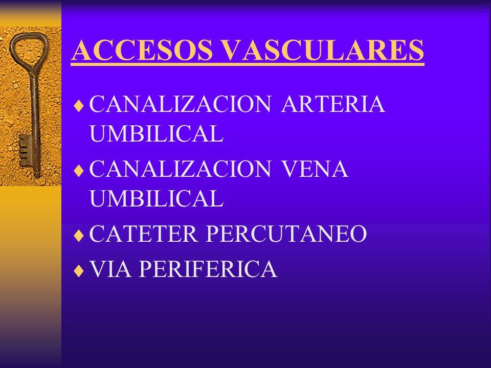 ACCESOS VASCULARES CANALIZACION ARTERIA UMBILICAL