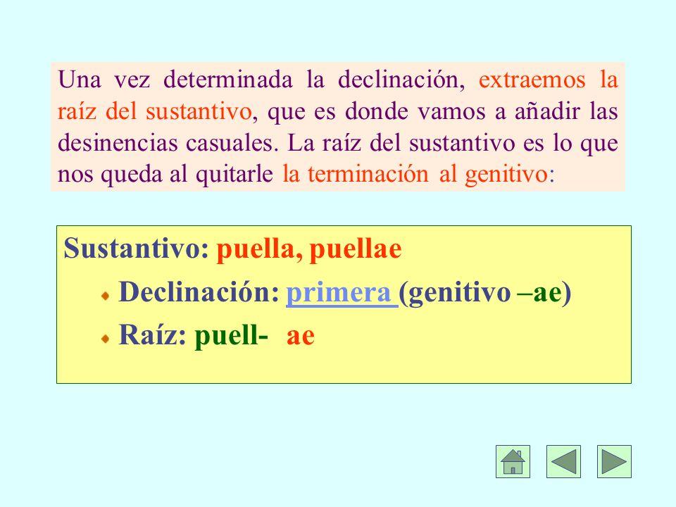 Sustantivo: puella, puellae Declinación: primera (genitivo –ae)