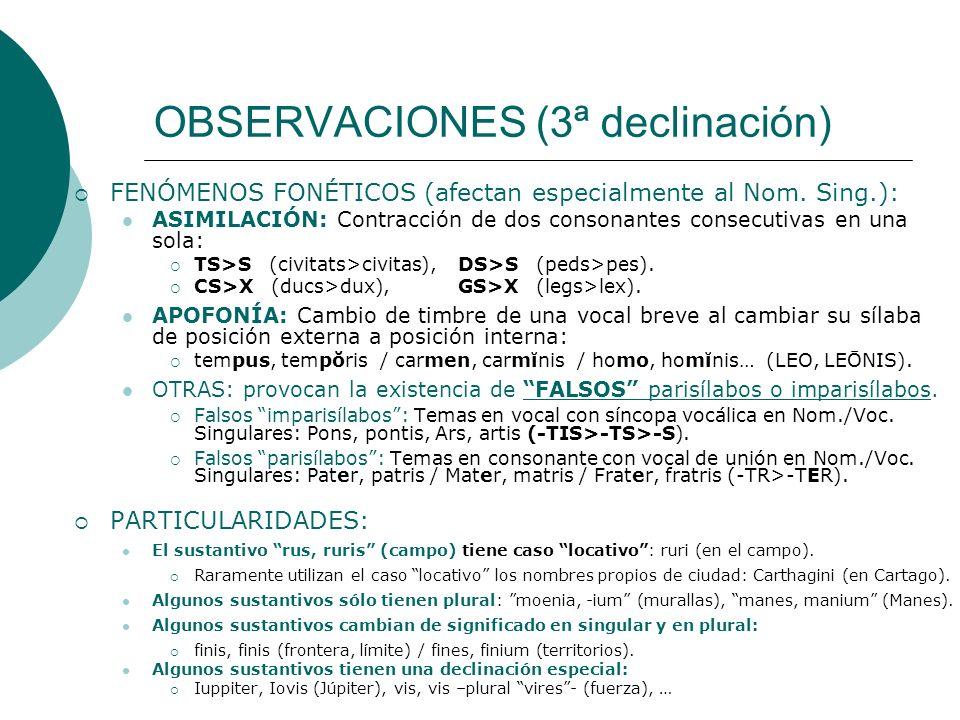 OBSERVACIONES (3ª declinación)