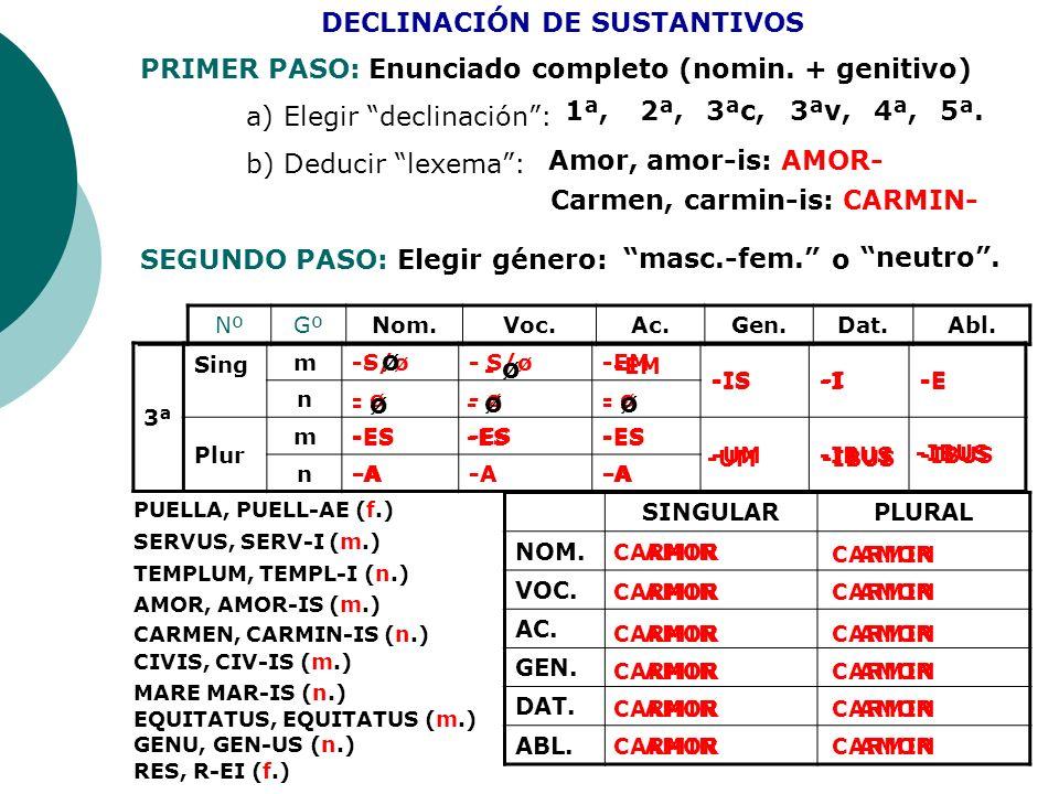 DECLINACIÓN DE SUSTANTIVOS
