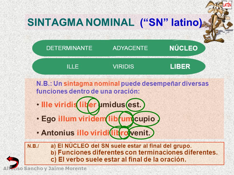 SINTAGMA NOMINAL ( SN latino)