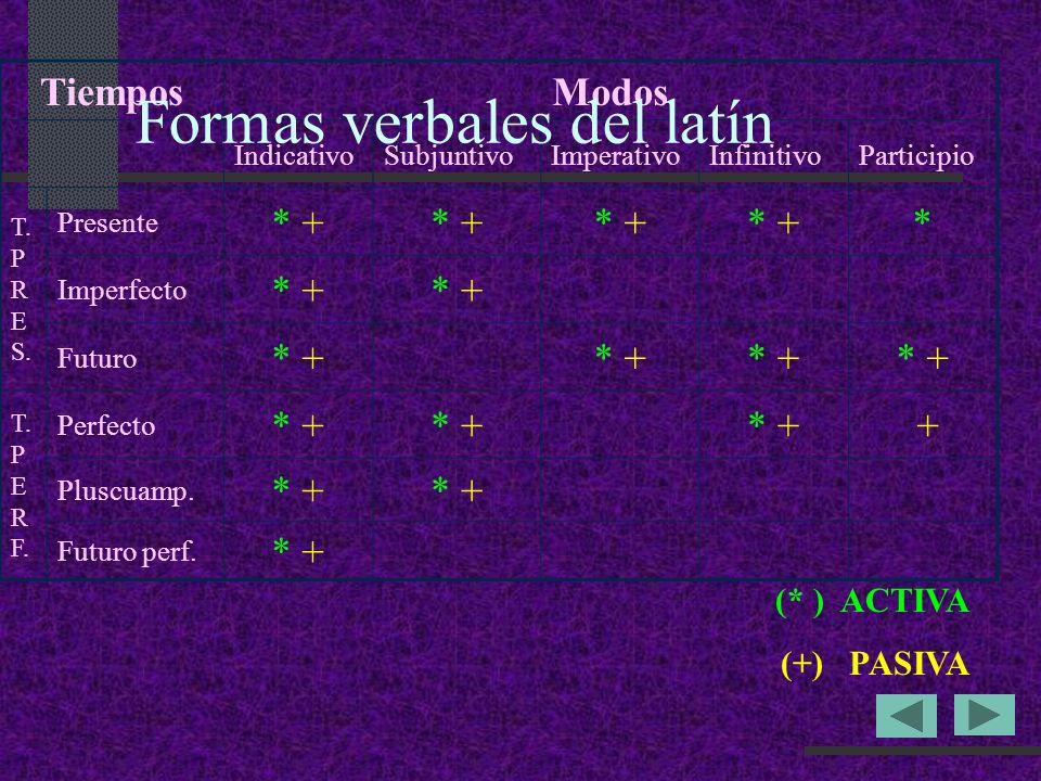 Formas verbales del latín