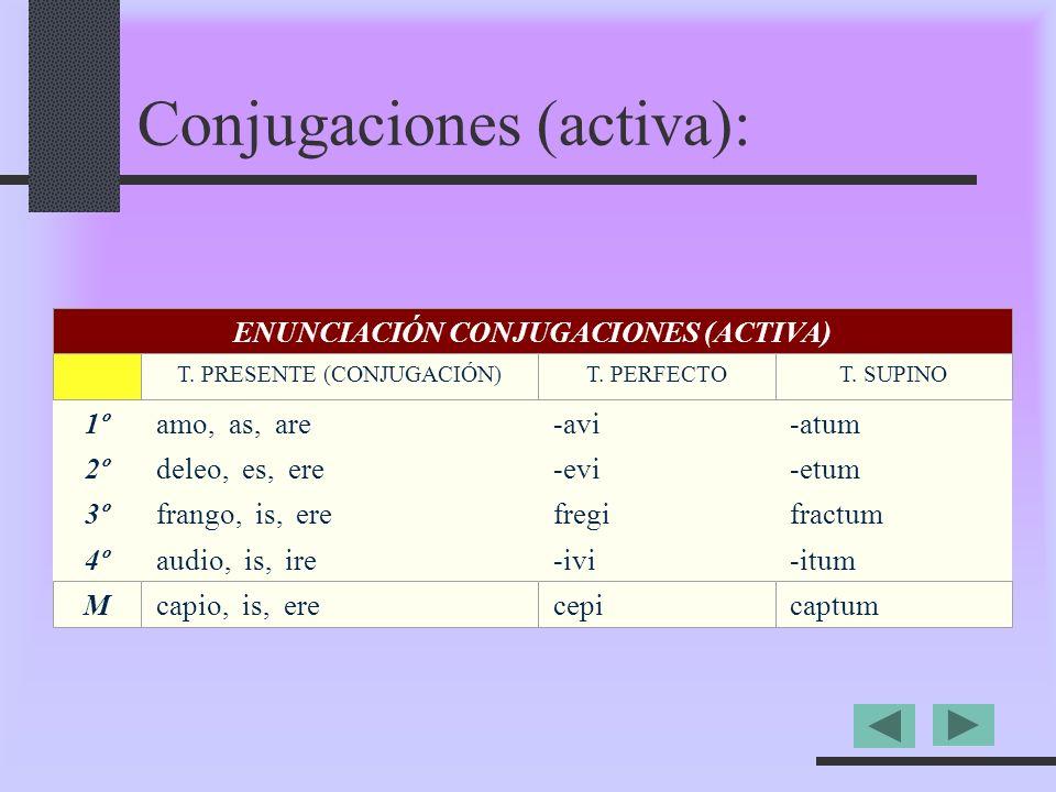 Conjugaciones (activa):