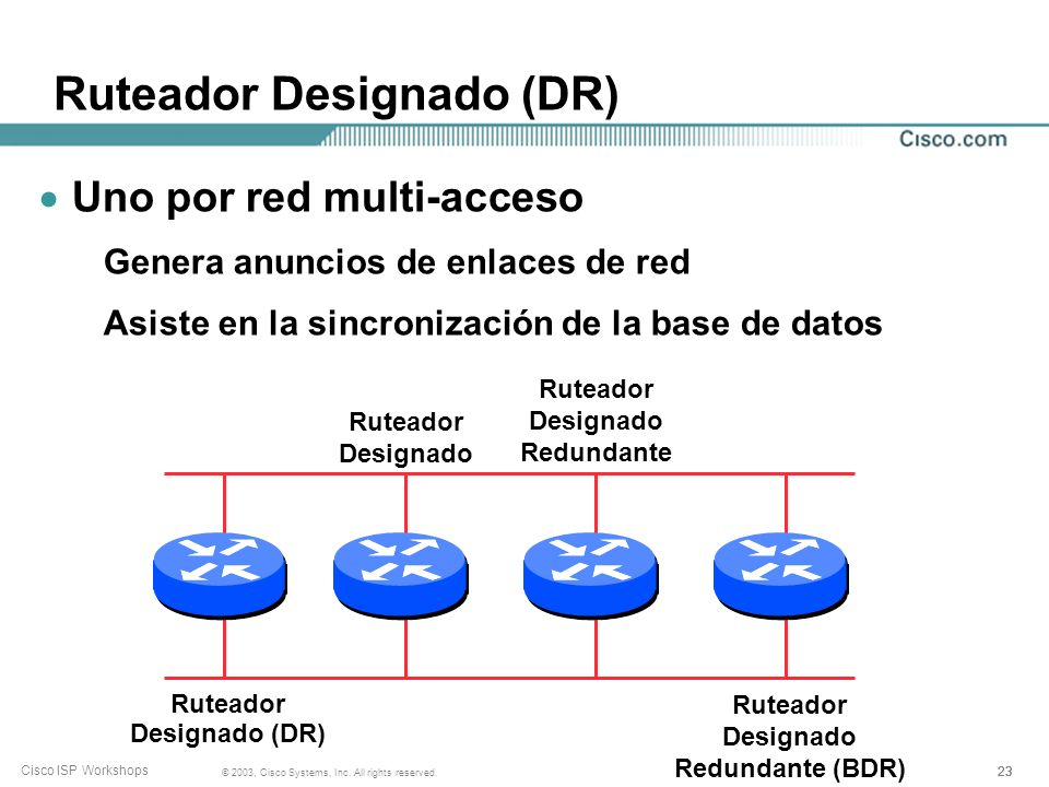 Ruteador Designado (DR)