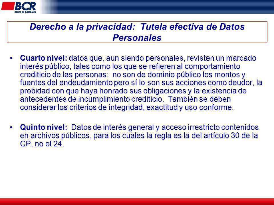 Derecho a la privacidad: Tutela efectiva de Datos Personales