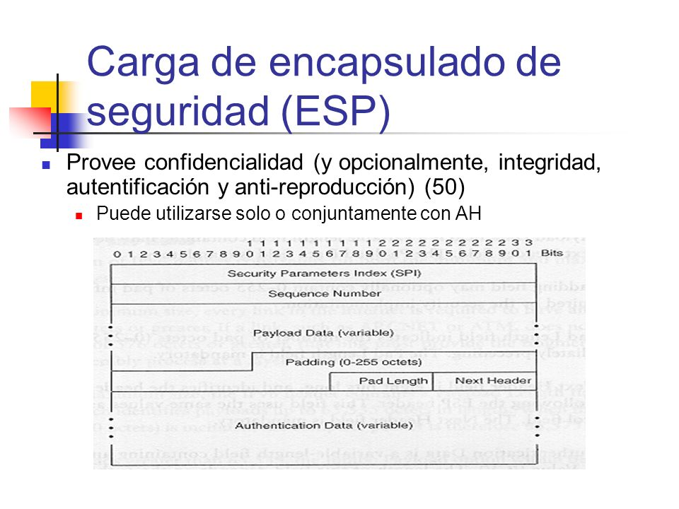 Carga de encapsulado de seguridad (ESP)