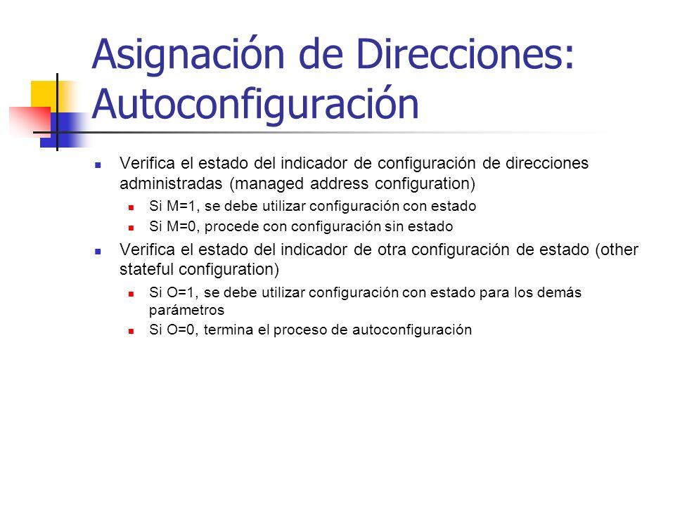 Asignación de Direcciones: Autoconfiguración