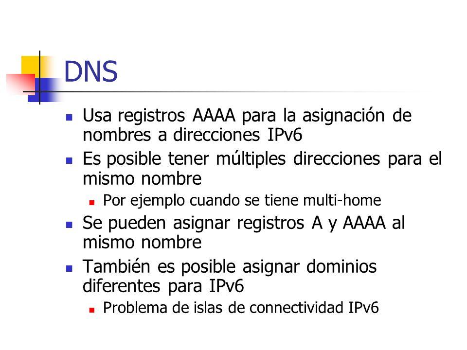 DNS Usa registros AAAA para la asignación de nombres a direcciones IPv6. Es posible tener múltiples direcciones para el mismo nombre.