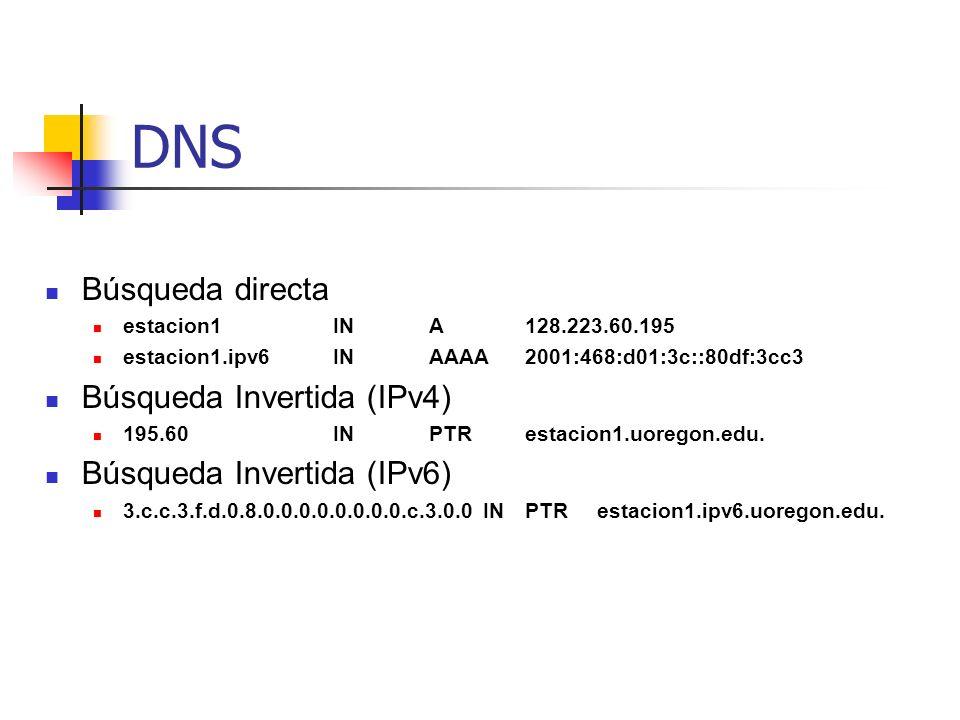 DNS Búsqueda directa Búsqueda Invertida (IPv4)