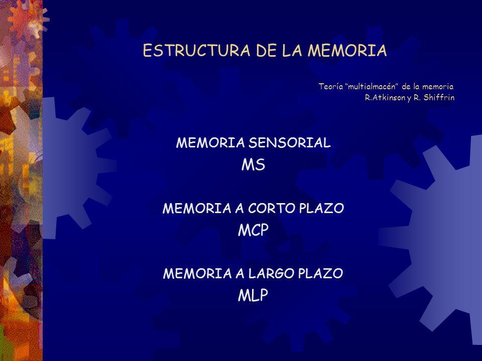 ESTRUCTURA DE LA MEMORIA. Teoría multialmacén de la memoria. R