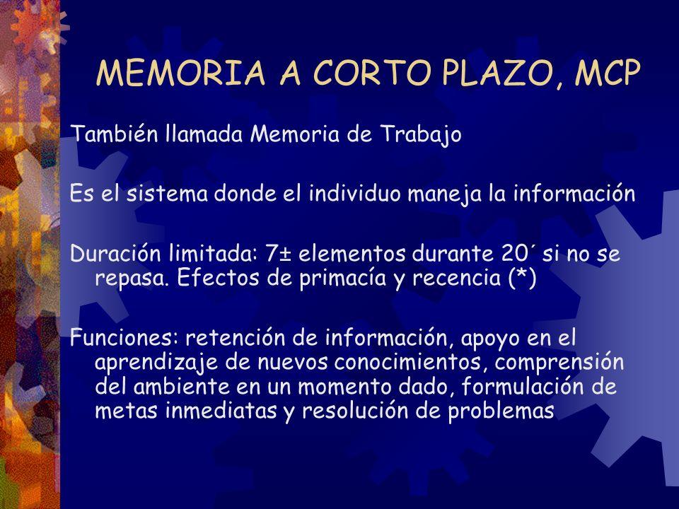 MEMORIA A CORTO PLAZO, MCP