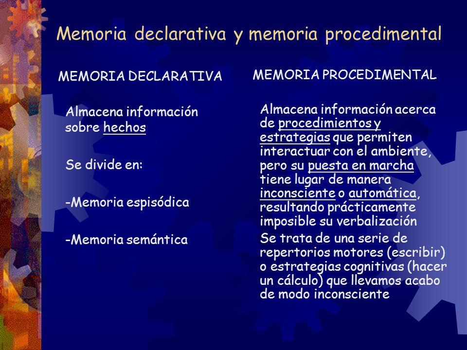 Memoria declarativa y memoria procedimental