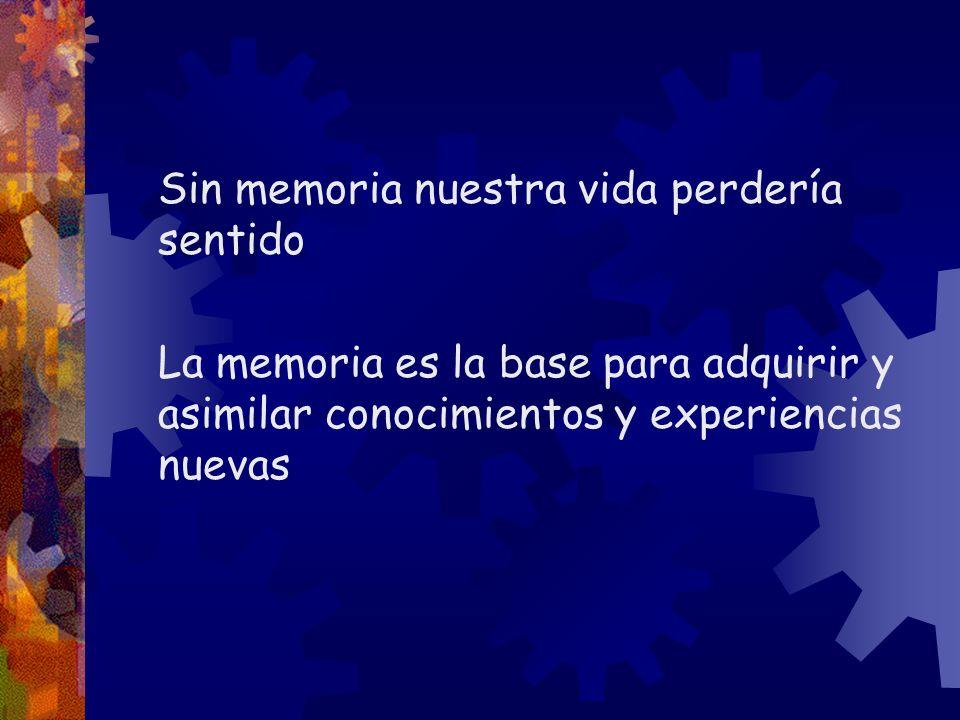 Sin memoria nuestra vida perdería sentido