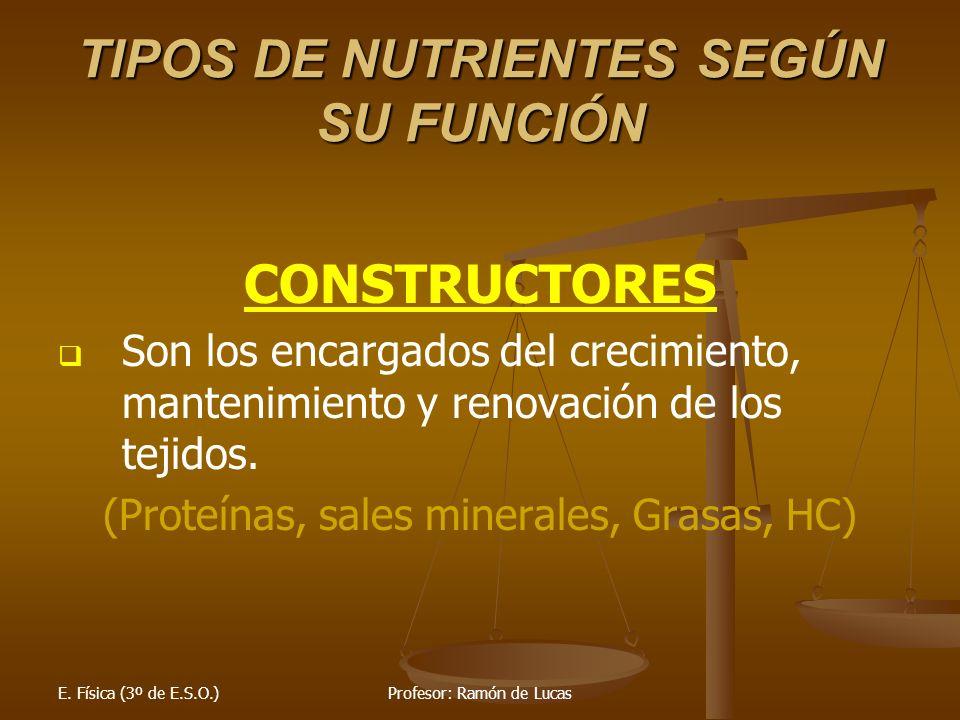 TIPOS DE NUTRIENTES SEGÚN SU FUNCIÓN