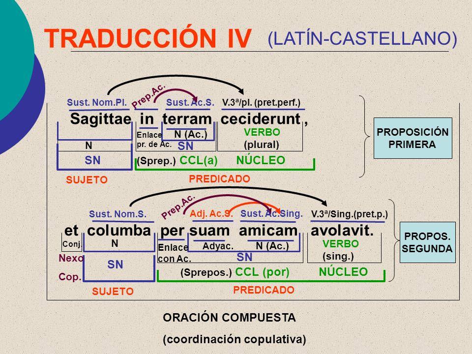 TRADUCCIÓN IV (LATÍN-CASTELLANO) Sagittae in terram ceciderunt ,