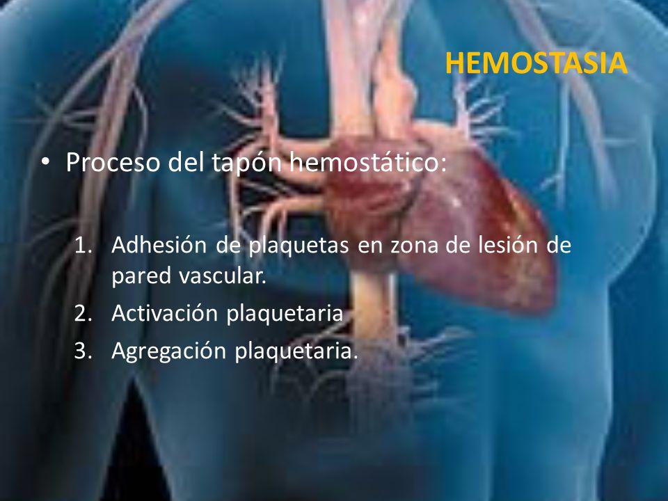 HEMOSTASIA Proceso del tapón hemostático: