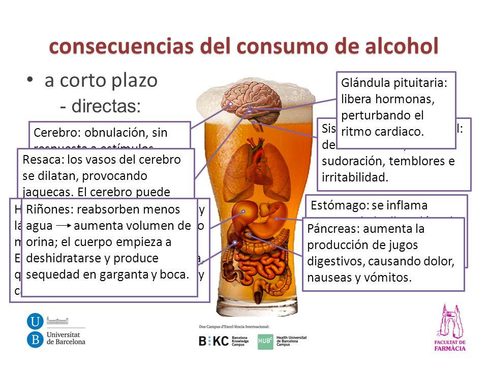 Influencias del alcohol en los adultos