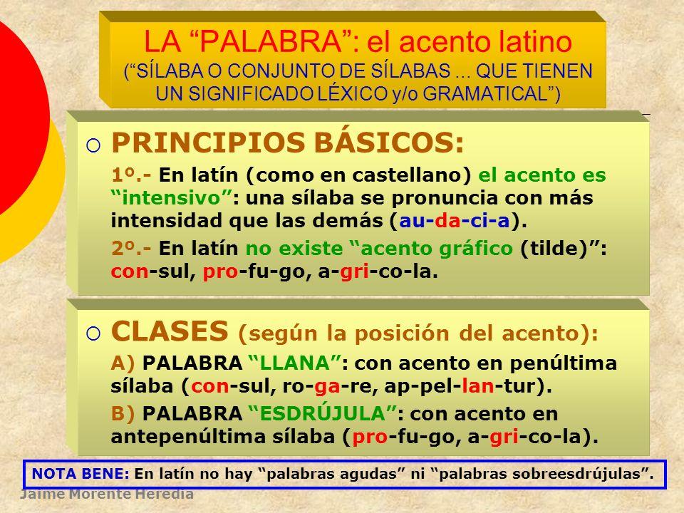 LA PALABRA : el acento latino ( SÍLABA O CONJUNTO DE SÍLABAS