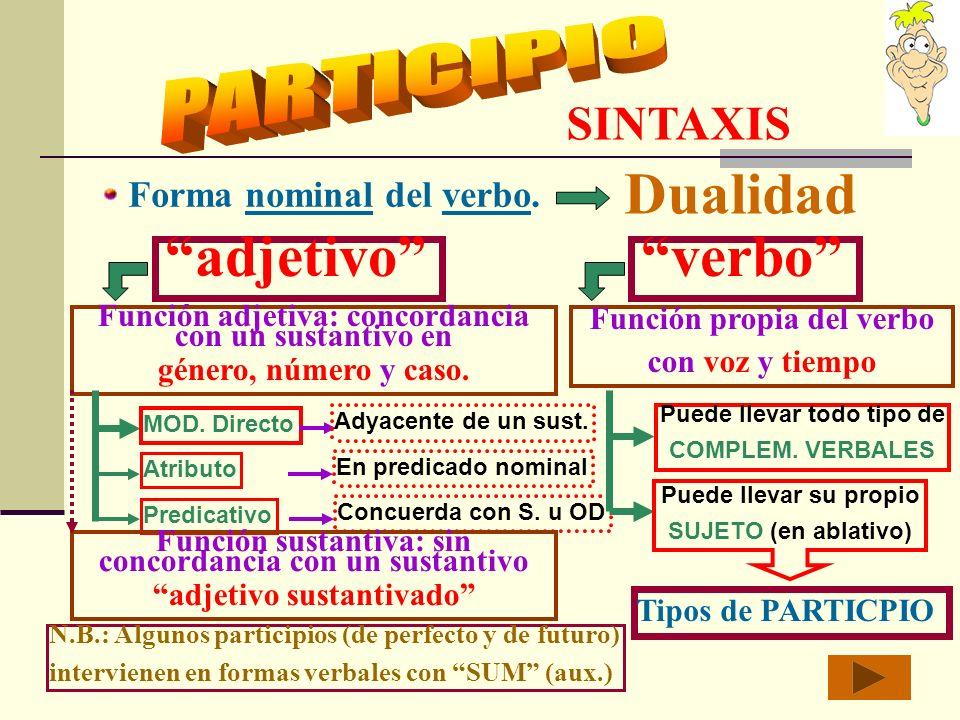 Dualidad adjetivo verbo PARTICIPIO SINTAXIS