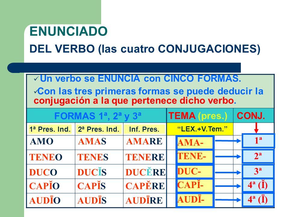 ENUNCIADO DEL VERBO (las cuatro CONJUGACIONES)