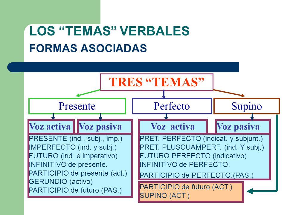 LOS TEMAS VERBALES FORMAS ASOCIADAS