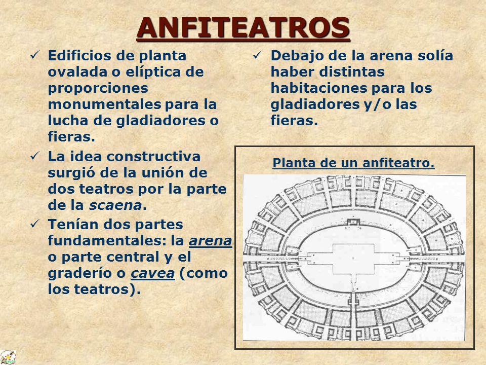 ANFITEATROS Edificios de planta ovalada o elíptica de proporciones monumentales para la lucha de gladiadores o fieras.