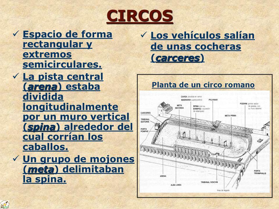 CIRCOS Espacio de forma rectangular y extremos semicirculares.