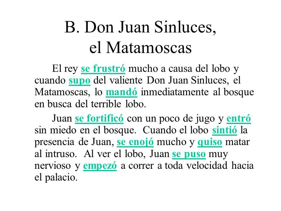 B. Don Juan Sinluces, el Matamoscas