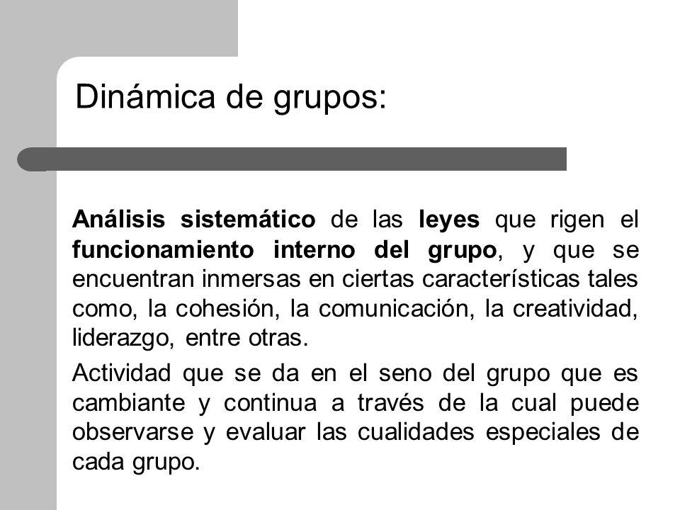 Dinámica de grupos:
