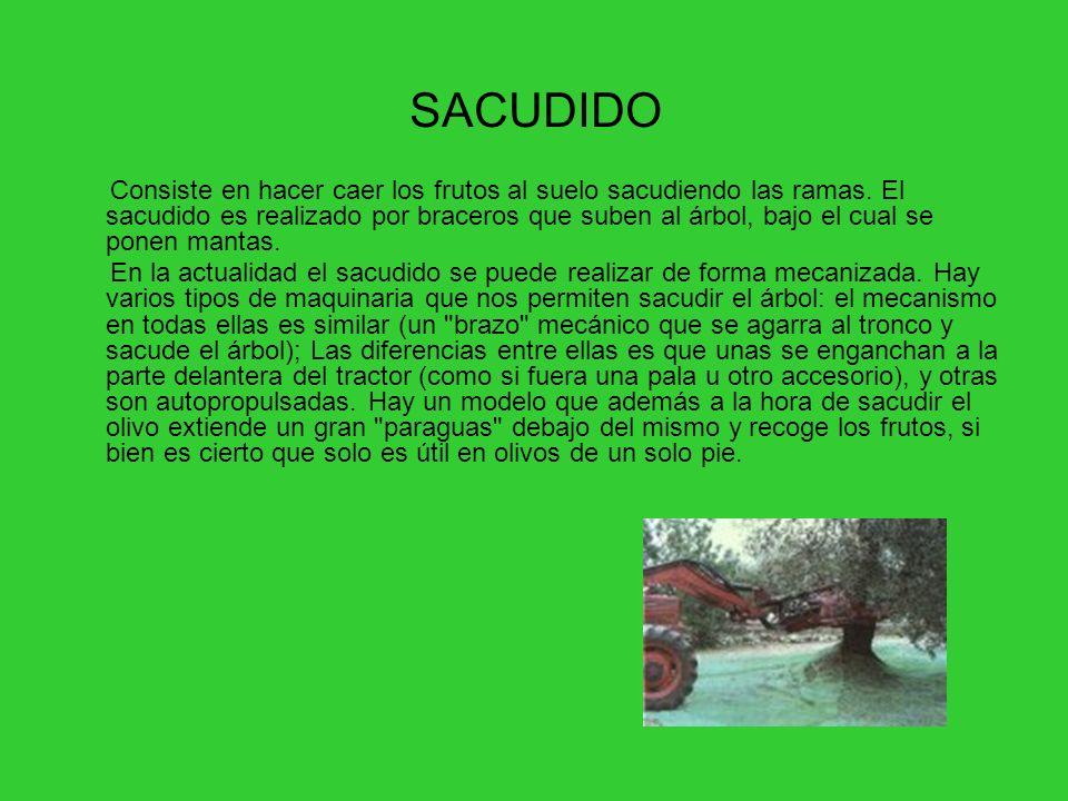 SACUDIDO