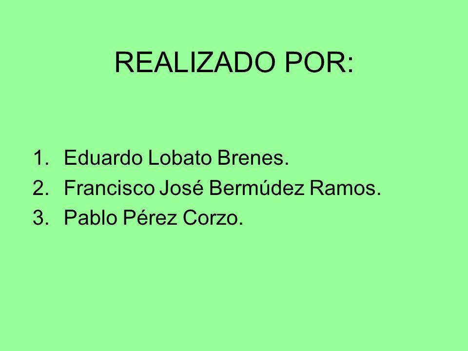 REALIZADO POR: Eduardo Lobato Brenes. Francisco José Bermúdez Ramos.