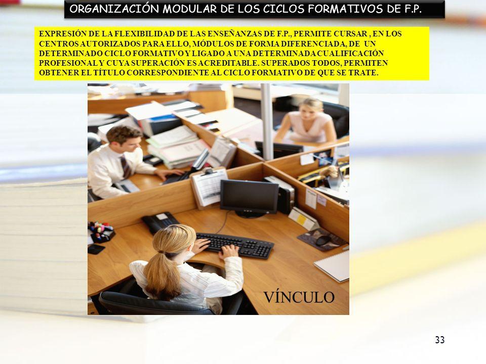 VÍNCULO ORGANIZACIÓN MODULAR DE LOS CICLOS FORMATIVOS DE F.P.