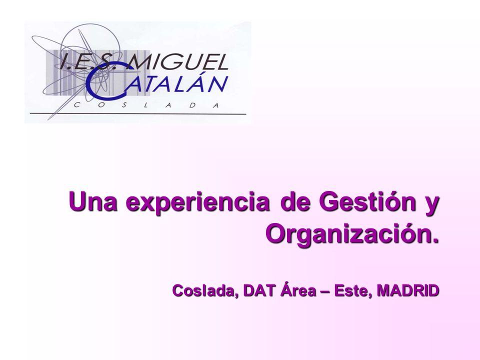 Una experiencia de Gestión y Organización