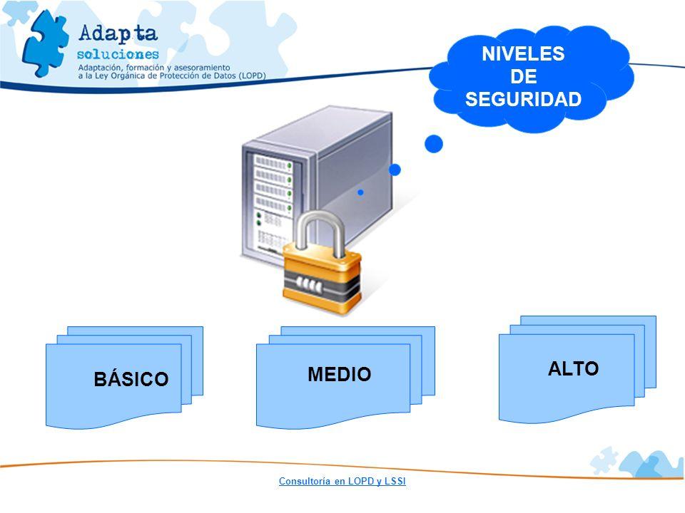 NIVELES DE SEGURIDAD ALTO MEDIO BÁSICO