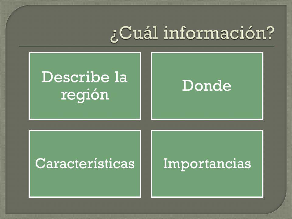 ¿Cuál información Describe la región Donde Características