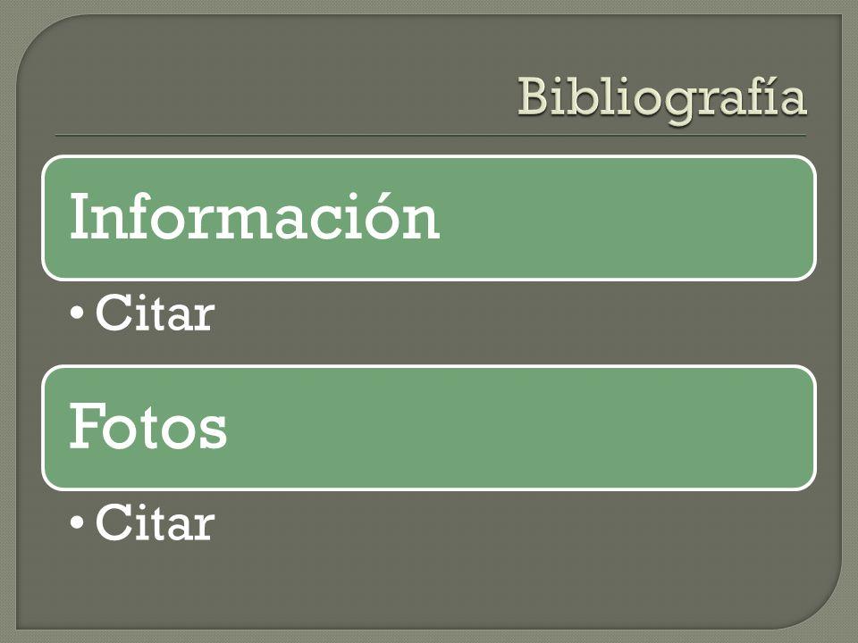 Bibliografía Información Citar Fotos