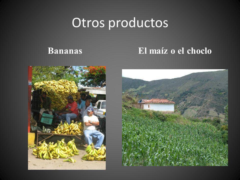 Otros productos Bananas El maíz o el choclo