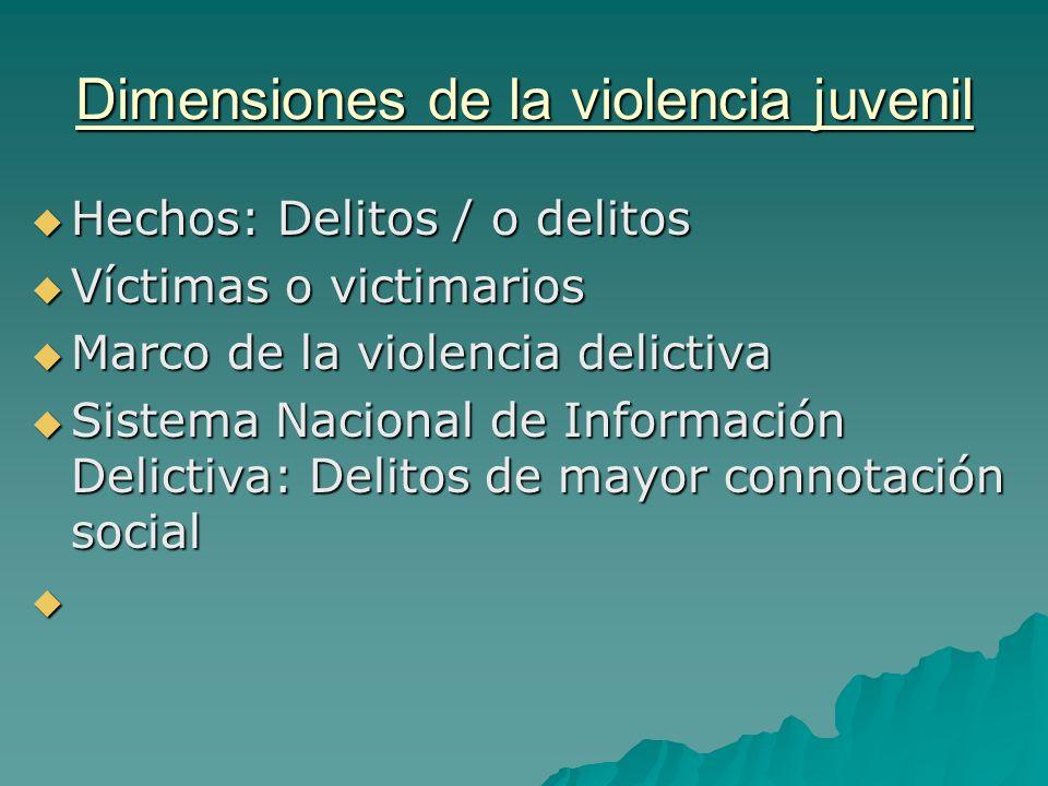 Dimensiones de la violencia juvenil