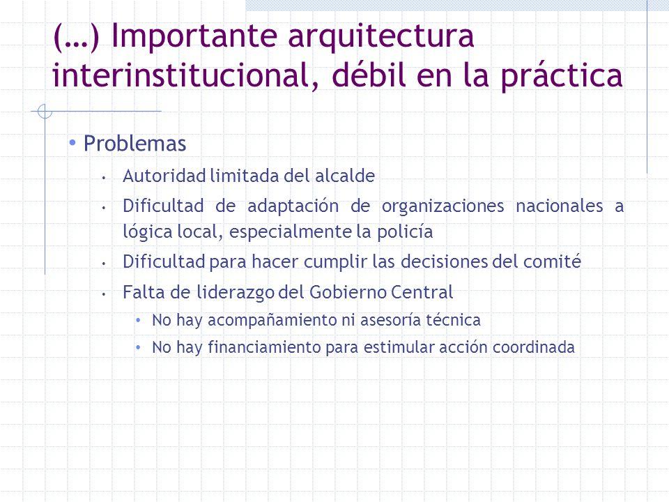 (…) Importante arquitectura interinstitucional, débil en la práctica