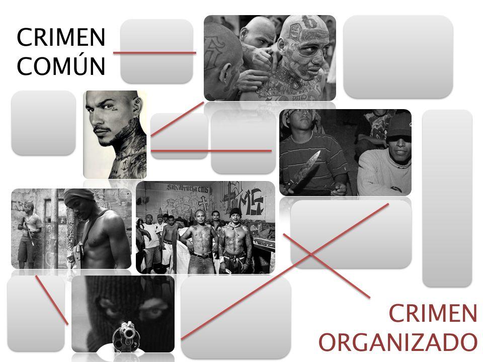 CRIMEN COMÚN CRIMEN ORGANIZADO