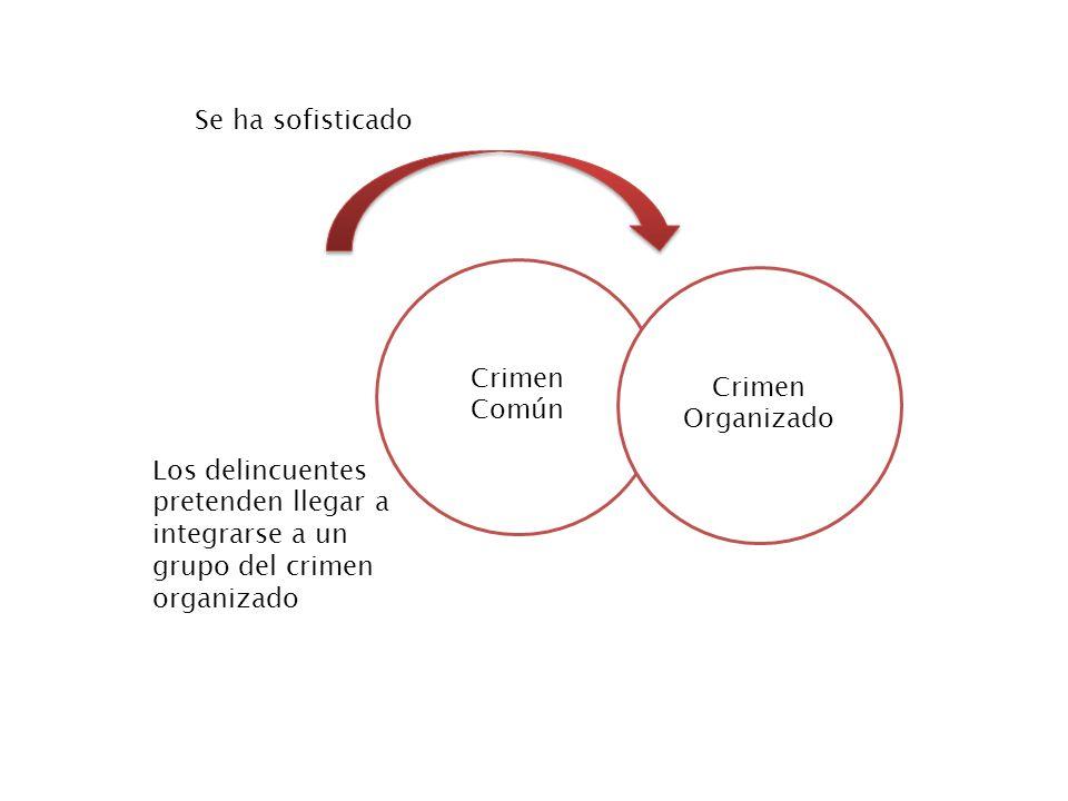 Se ha sofisticado Crimen Común. Crimen Organizado.