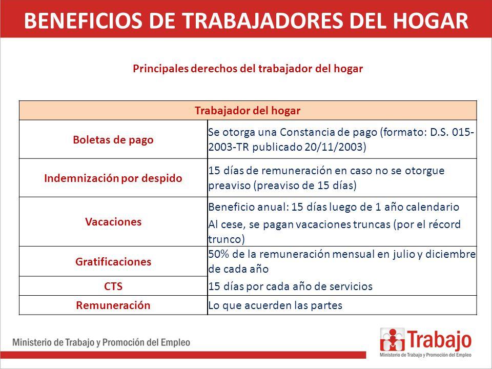 La fiscalizaci n laboral de los trabajadores del hogar for Formulario trabajadores del hogar