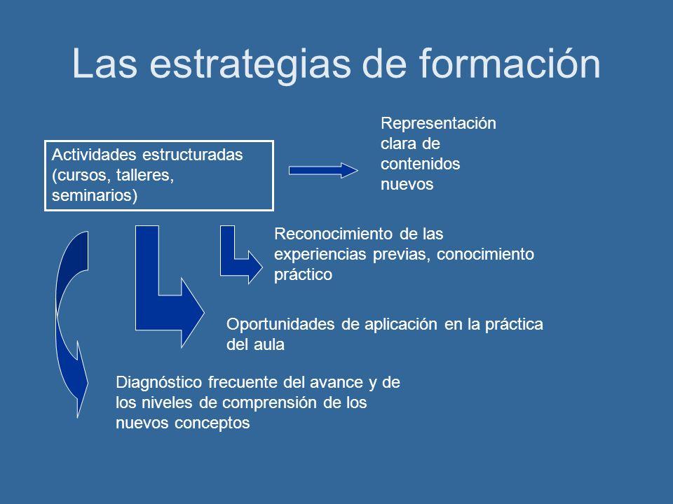 Las estrategias de formación